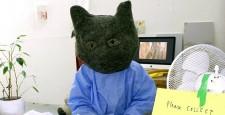 http://glasgowinternational.org/wp-content/uploads/2014/03/Kitten-receptionist-final-resized-225x115.jpg