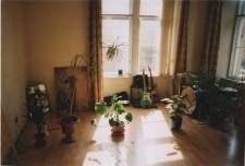 http://glasgowinternational.org/wp-content/uploads/2016/02/Still-House-Plants-Scan_19-225x152.jpeg