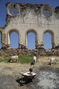 http://glasgowinternational.org/wp-content/uploads/2017/12/olive-goats-225x338.jpg