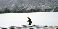http://glasgowinternational.org/wp-content/uploads/2018/04/ulrike-ottinger-under-snow-225x113.jpg